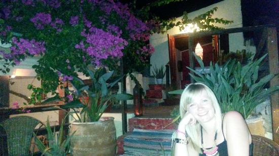 Vinnies' Garden: Roof terrace, Vinny's garden