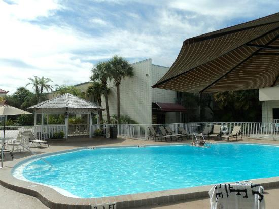 La Quinta Inn Clearwater Central: a view of the pool from our room