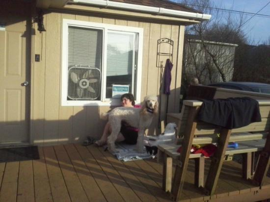 Sea Haven Motel: front porch/deck