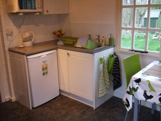 Trefin, UK: Fridge, microwave and sink area