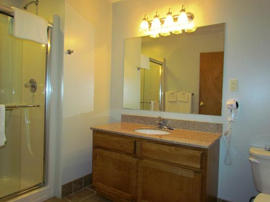 Lake Haven Motel: Shower style bathroom