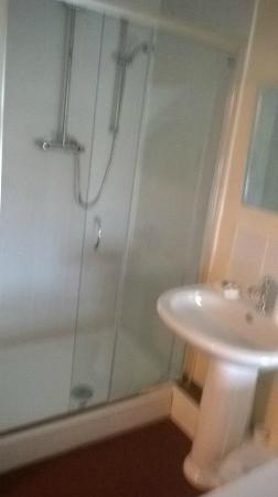 The Brown Horse Hotel: large shower