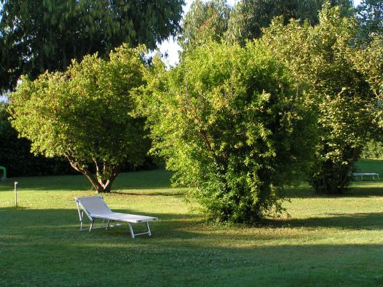 Agriturismo Eucaliptus : Garten