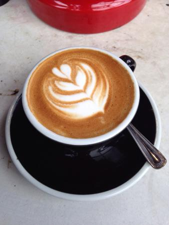 The Elgin: Antipodean style coffee - real flat whites