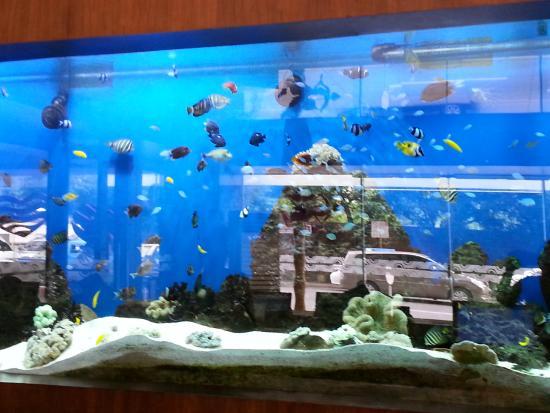 Castle Peak Hotel: Reception aquarium
