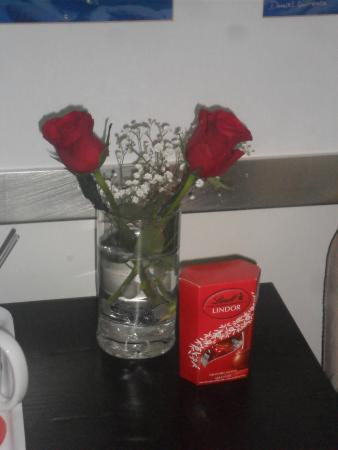 The Beach Pad: 2 nice Roses + box of chocolates for a romantic weekend