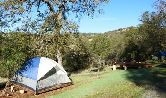Sivananda Ashram Yoga Farm: Tenting in one of many camping spots