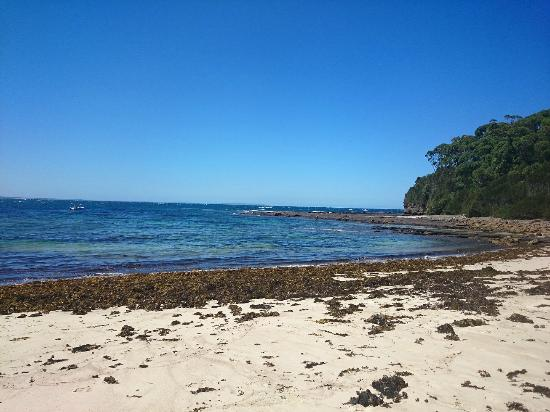 Ulladulla Headland Holiday Park: Lobster Jack Beach
