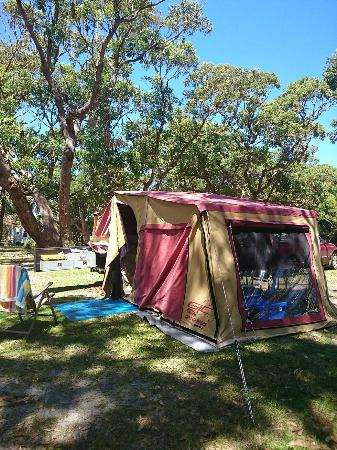 Ulladulla Headland Holiday Park: Lovely treed camp sites