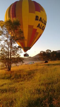 Buffs at Pokolbin : balloon in the area of Hunter Valley