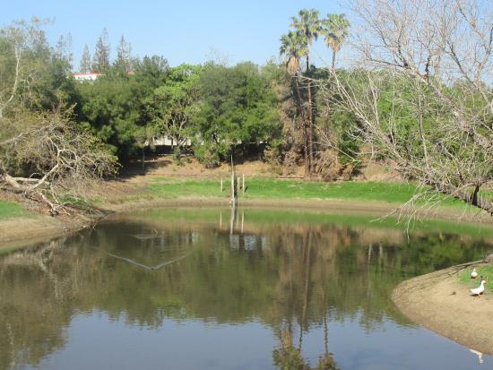 Overfelt Gardens, San Jose, Ca
