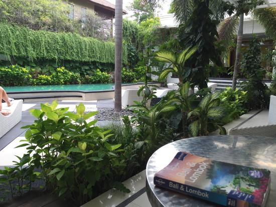 Casa Artista Bali : Pool area