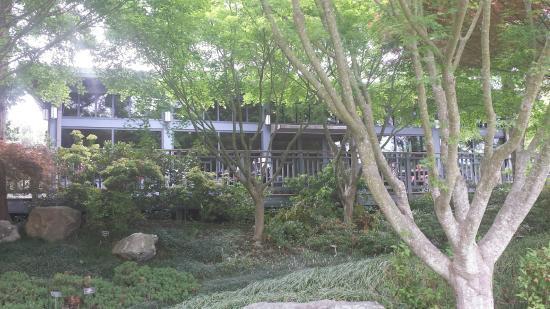 The Japanese Tea House Picture Of Lewis Ginter Botanical Garden Richmond Tripadvisor