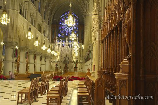 Cathedral Basilica of the Sacred Heart: Looking from behind where the priest would preach to the main entrance