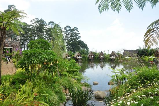 Dusun Bambu Family Leisure Park: salah satu view terbaik dusun bambu