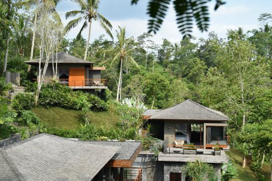 Villa Ylang And Villa Bamboo Viewed From The Top Of A Palm