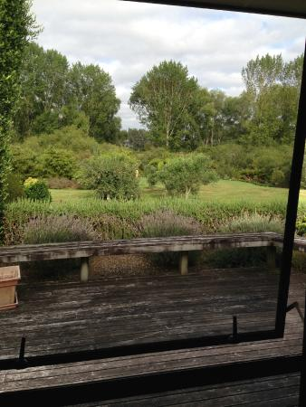 Uliveto B&B: View from the bedroom