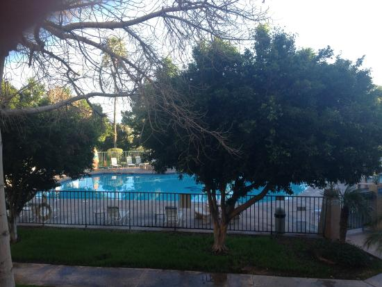 Shilo Inn & Suites - Yuma: pool area