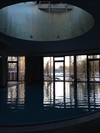 Seepark Hotel: Der Swimmingpool