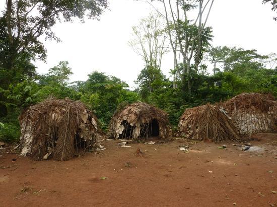 VILLAGE DES PYGMEES DE MAMBASA, ROUTE BUNIA