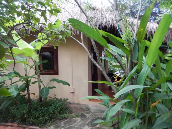 Botanica Guest House : My little bedroom hut