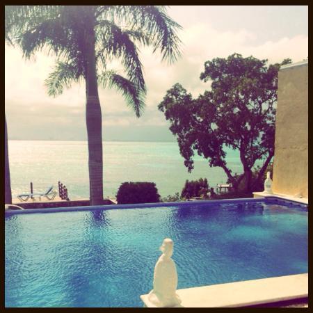 Hotel La Joya: プール  こじんまりですがとてもいい感じです  何しろ全てが静かでゆっくり過ごすには、最高です☆  下に行くと小さいプライベートビーチになってます☆