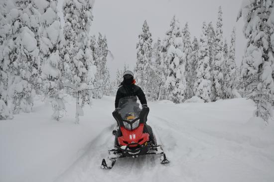 Holiday Village Gulo Gulo: Snowmobile