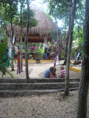 La Calma Casa: View of the central palapa from the path that leads to the yoga studio