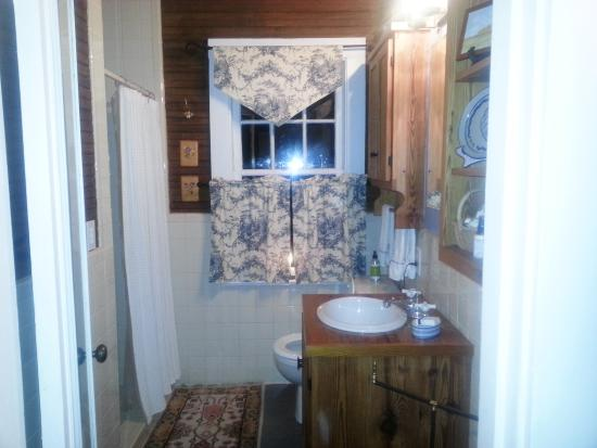 Snow Hill, Carolina del Nord: Bathroom