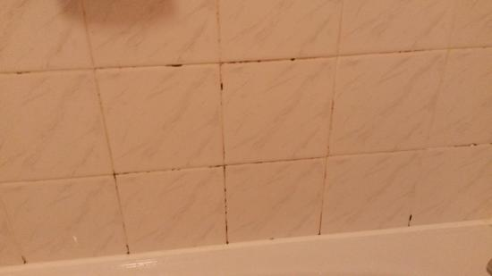 Premier Inn Farnborough West (Southwood) Hotel : Mould in bathroom