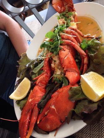 Lagosta - Lobster - Langouste  Maravilhosa - wonderful - Merveilleux