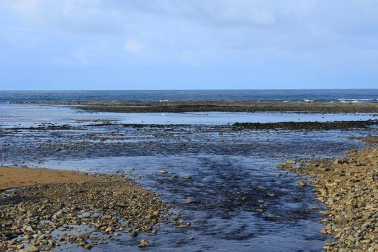 Doonbeg, Ιρλανδία: Doughmore Bay