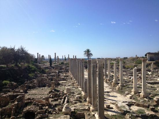 Tyre: Old City Ruins