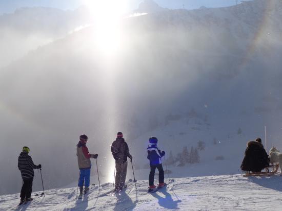 Eiger Guesthouse: Einer der täglichen Sehspekaktakel auf der Piste