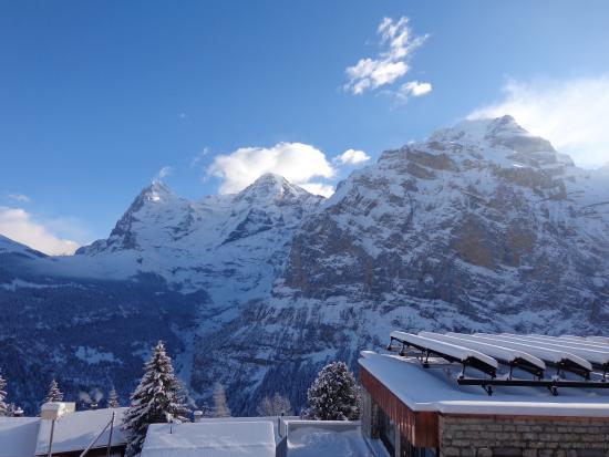 Eiger Guesthouse: Und Blick nach vorn