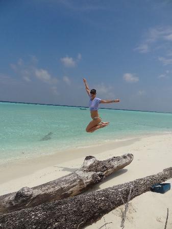 Maldive Due Palme: Ti fanno volare Maldive Alternative