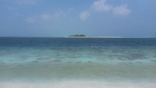 Maldive Due Palme: Una delle isole
