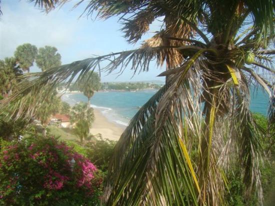 Treasure Beach Hotel : View from my room