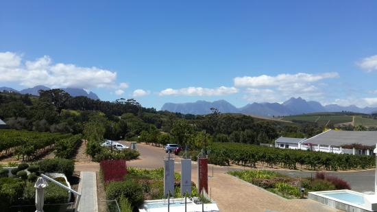 House of J.C. Le Roux: View from the restaurant balcony