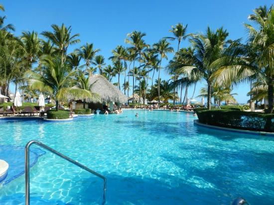 Dreams Palm Beach Punta Cana: pool