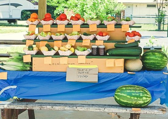 Nashville East Lebanon KOA Homegrown Veggie Stand