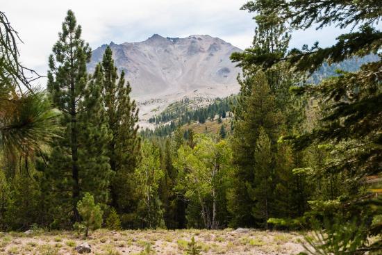 Hiking Devastated Area Interpretive Trail