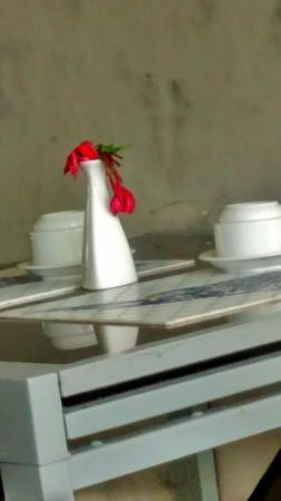Armacao dos Buzios Pousada Design: flores murchas....
