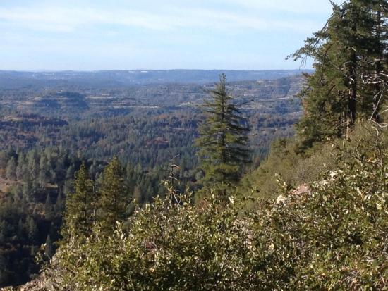 Scenic View from the Arnold Rim Trail