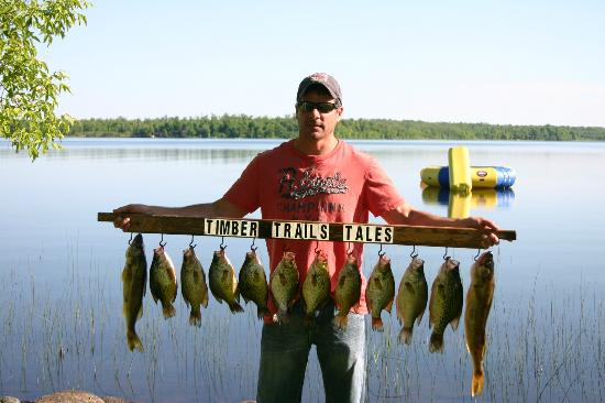 Timber Trails Resort: Fishing on Boy Lake