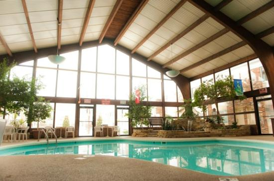 The Country Springs Hotel Indoor Pool