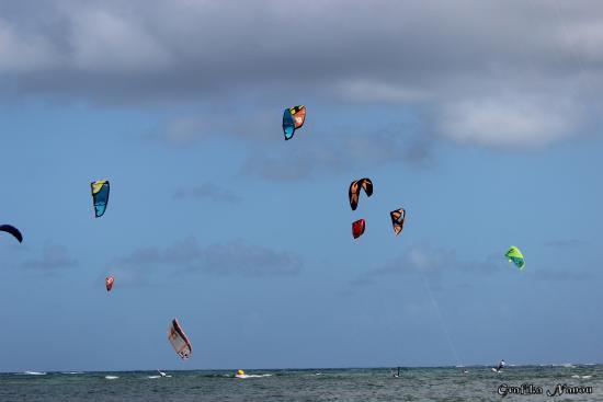 AirFly Kite Camp