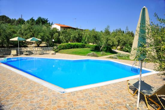 Villas Lefkothea: Outdoor Swimming Pool
