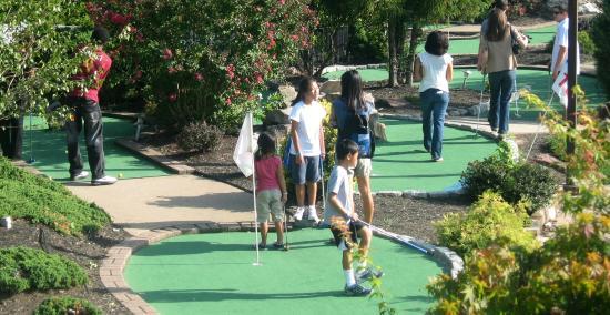 Dulles Golf Center & Sports Park: Mini Golf
