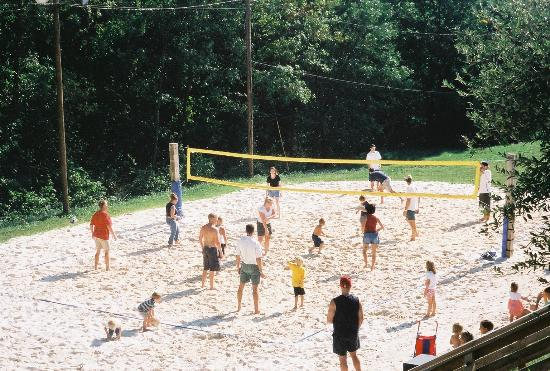 Dulles Golf Center & Sports Park: Volleyball